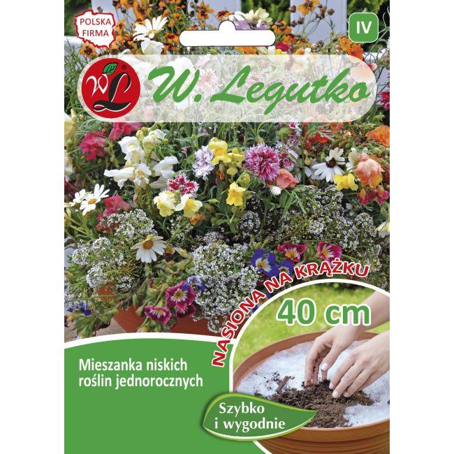 Mieszanka niskich roślin jednorocznych - wysokość ok. 30 cm - krążek - 1szt.