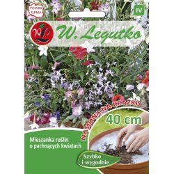 Mieszanka roślin jednorocznych o pachnących kwiatach - krążek - 1szt.