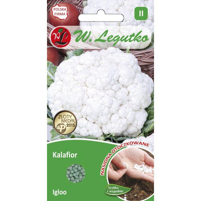 Kalafior - Igloo - 50 szt. nasion
