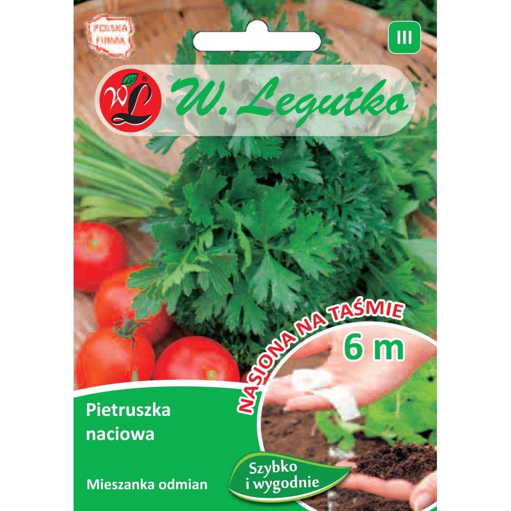 Pietruszka naciowa - mieszanka odmian o liściach gładkich i kędzierzawych - taśma 6m