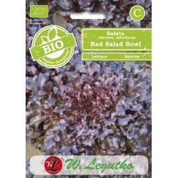 BIO - Sałata/Lactuca sativa/Red salad bowl/czerwone (c)/0.50g