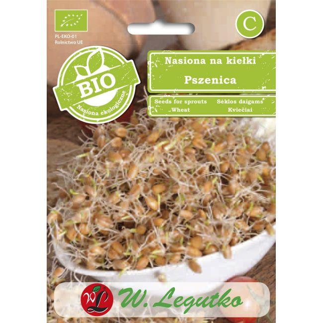 BIO - Nasiona na kiełki - pszenica zwyczajna/Triticum aestivum///30.00g