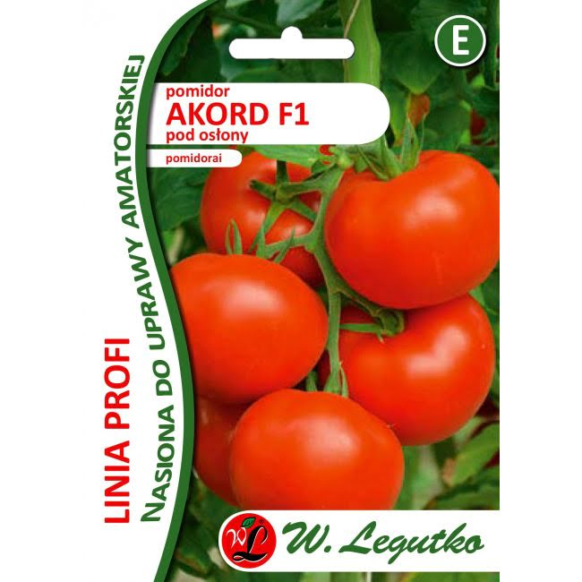 Pomidor/Solanum lycopersicum/Akord F1/czerwone/30nas.