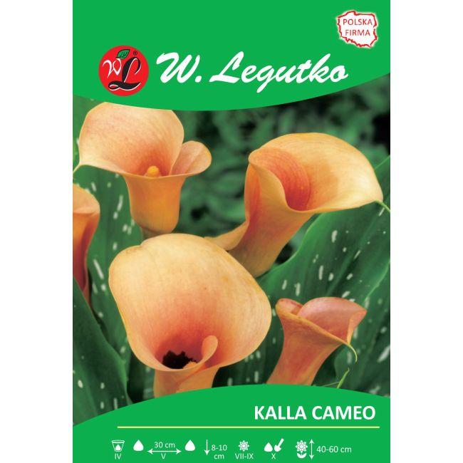 Kalla - Cameo - łososiowa