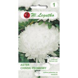 Aster chiński peoniowy - biały