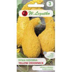 Dynia ozdobna - Yellow Crookneck