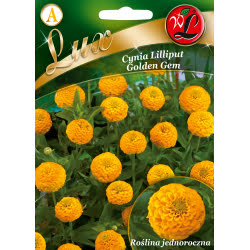 Cynia Lilliput Golden Gem