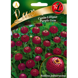 Cynia Lilliput Purple Gem