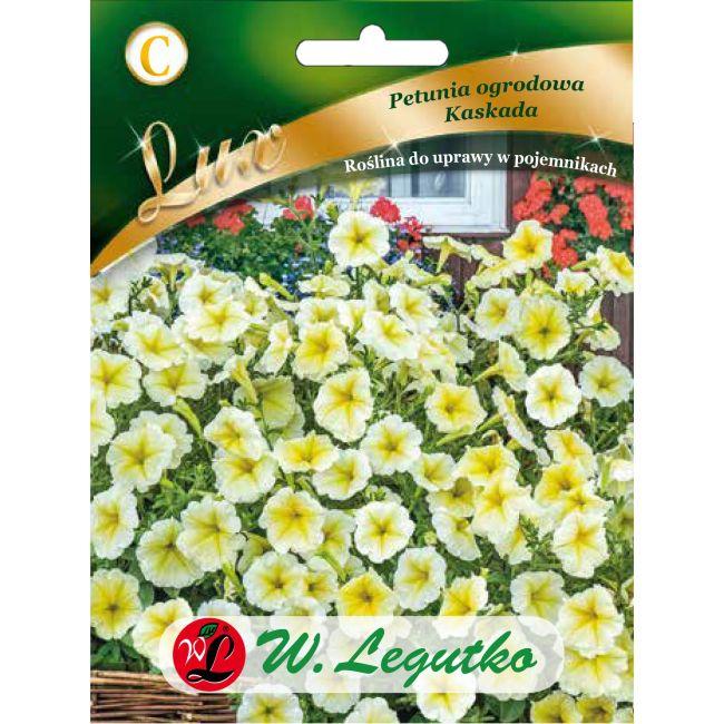 Petunia ogrodowa - Kaskada - żółta