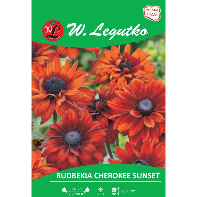 Rudbekia dwubarwna Cherokee Sunset