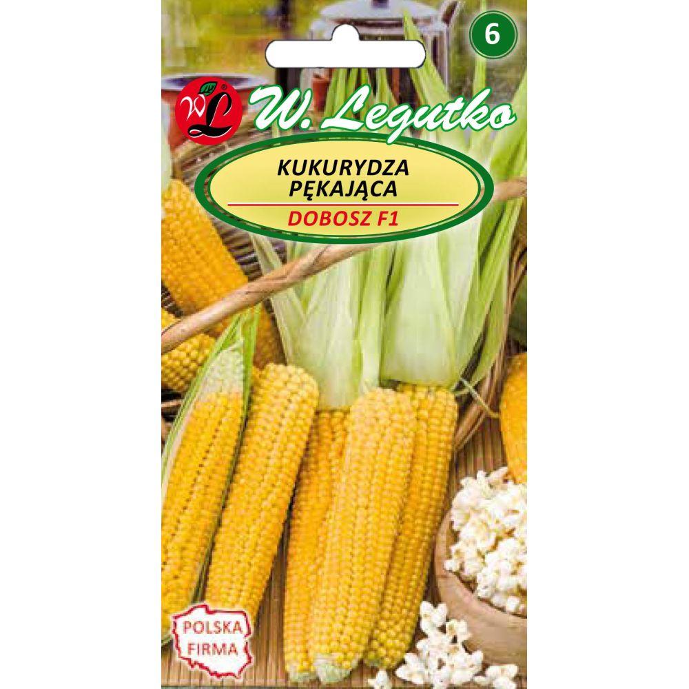 Kukurydza pekająca Dobosz
