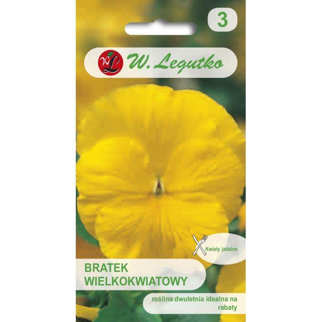 Bratek ogrodowy - Szwajcarski wielkokwiatowy - Goldgelb, Coronation Gelb