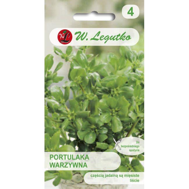 Portulaka warzywna - zielona