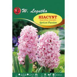 Hiacynt - Apricot Passion - 0,5 kg