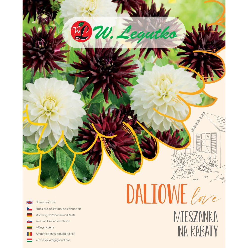 Mieszanka na rabaty - Kompozycja dalii z grupy dekoracyjna - rabatowa oraz kaktusowa rabatowa