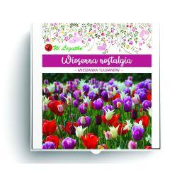 Wiosenna nostalgia - kompozycja cebul kwiatowych