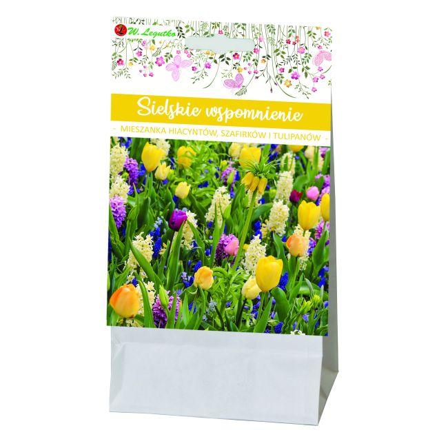 Sielskie wspomnienie - kompozycja cebul kwiatowych