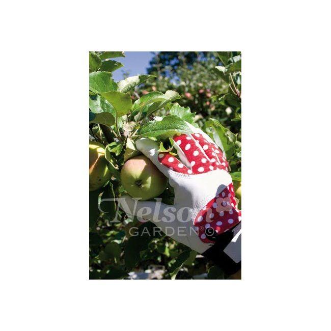 Rękwice ogrodnicze Betty