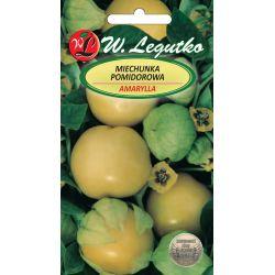 Miechunka pomidorowa - Amarylla