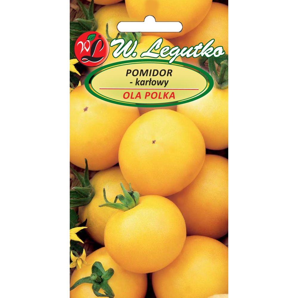 Pomidor gruntowy Ola Polka