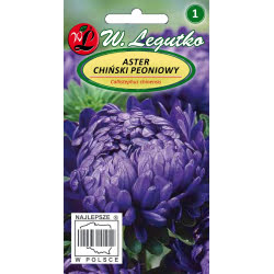 Aster chiński peoniowy - fioletowy